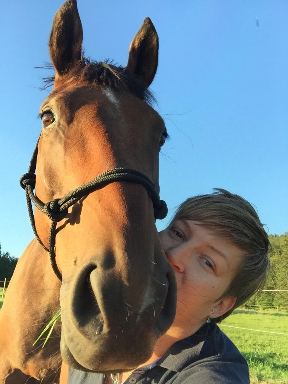 Glad och peppad häst – Att försöka bli bra på fälttävlan
