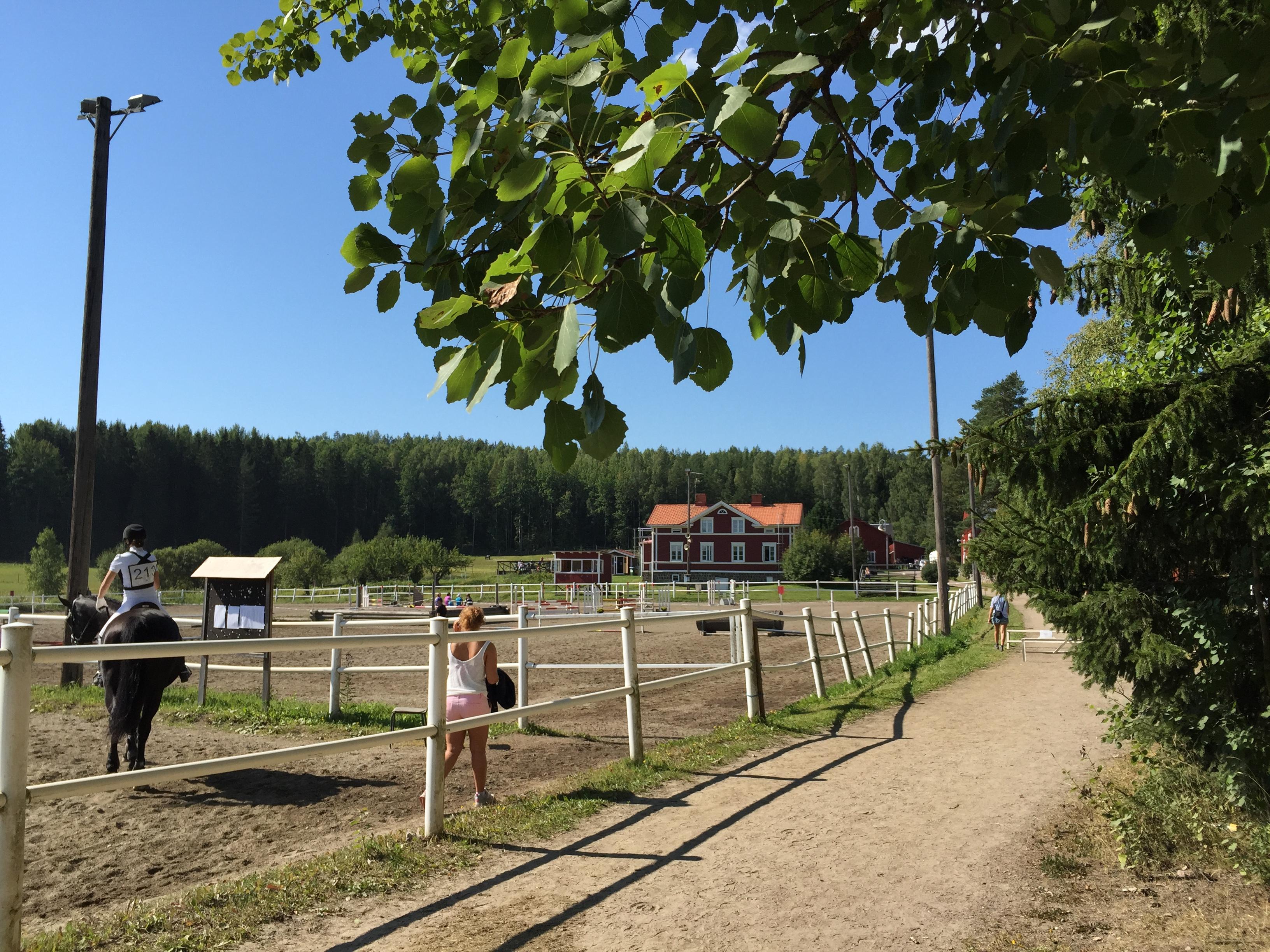 Ida Qvarnström – Sida 69 – Att försöka bli bra på fälttävlan